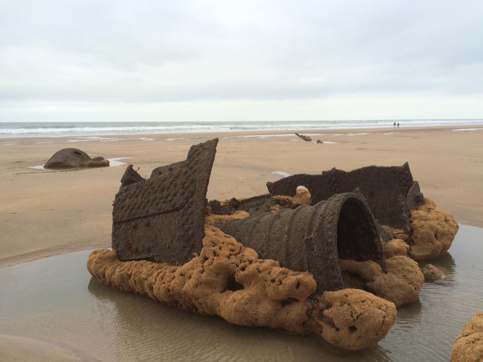 A ship wreck at low tide.