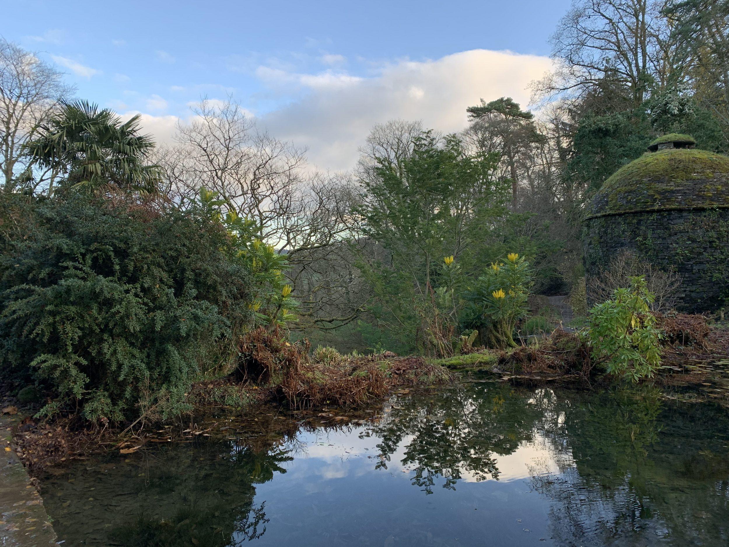 Cotehele's gardens